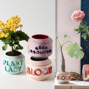 ANTHROPOLOGIE Garden Greeting Pot Bloom